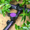 fittings-valve-purple-back