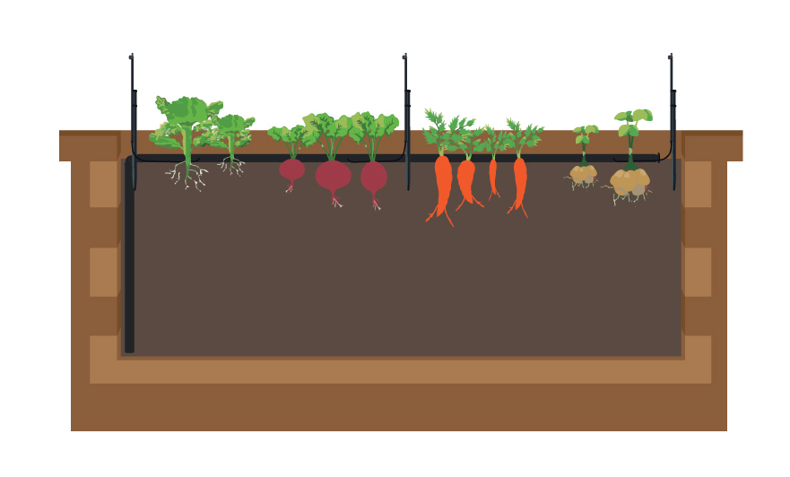 veggie-garden-with-Sprinklers-cut-out